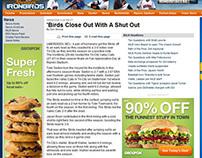 Aberdeen IronBirds Article Writing