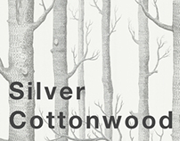 Silver cottonwood. Project
