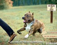 INGLES PARA TODOS - LA VIDA NO TIENE SUBTÍTULOS