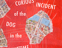 The Curious Incident of the Dog in the Nighttime Cover