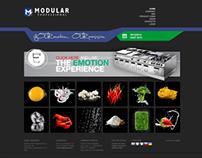 Modular Website