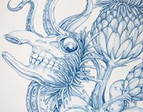 Flosculus Monstruosus - Drawings