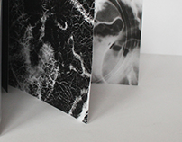 Haiku Calendar 2013, photogram