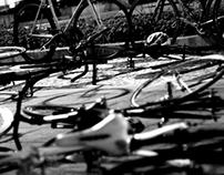 Fixed gear - Curitiba