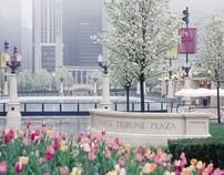 Millennium Park & Lurie Garden