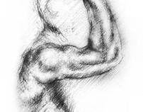 Artistic Anatomy: Arm study