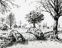 Landscapes (Ink Sketches)