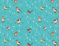 British garden bird pattern- bird watch surface design