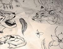 my sketch paper