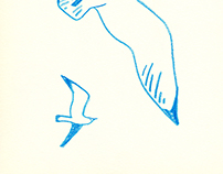 drawing_bird