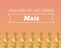 Monsanto - La fiebre del maíz