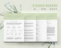 3 Page Dusty Green Resume Template /Free Coverletter