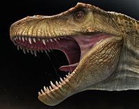 Tyrannosaurus. CG breakdown.