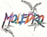 Moledro Band Artworks