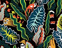 AMAZONAS PATTERN