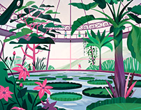 The Giant water lilies
