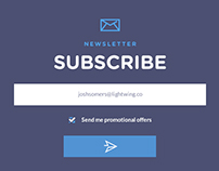 Newsletter Subscribe UI