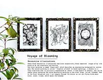Voyage of Blooming
