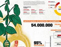 Infographic GMO