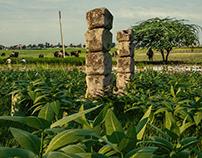 Village Land