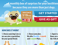 Dog Subscription Website: Mascot and Website Design