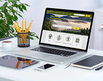 Responsive Web Design: Government Agency