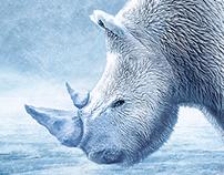 Polar Rhino