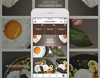 Estrategia Digital HUEVOS Crepes & Waffles (instagram)
