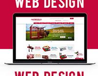Web Site Design TecnoCor - Proyect