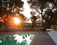 Bosco degli Ulivi - Apulia