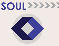 Soul Incarnate Record