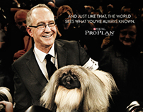PURINA - Westminster Dog Show
