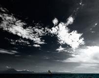 mare / sea