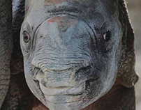 Zoo Miami Annual Report