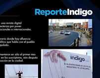 Reporte Índigo - Marioneta