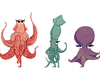 sexy cephalopods