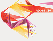 BRANDING 2010 | ADOBE CS6
