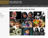 Pre-Columbian Museum - Santiago. Web proposal (EN-ES)