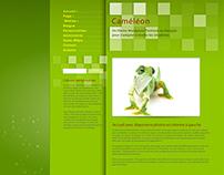 Portfolio Web - Thème WordPress, maquette