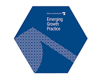 Holland & Hart Emerging Growth Practice Brochure