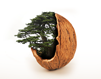 Malwa Nuts - Lebanese Independence Post