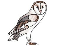Iconic British Birds