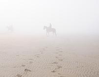 Rider on a beach