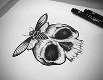 Insect and Skull