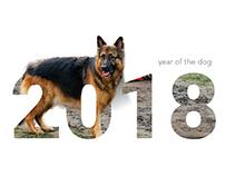 2018 Calendar | Animals
