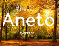 Aneto Typeface