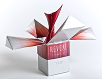 REVEAL: Perfume Branding and Packaging