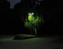 Nachtansichten