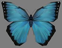 Morpho Butterfly - 3D Model