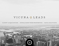 Vicuna Leads